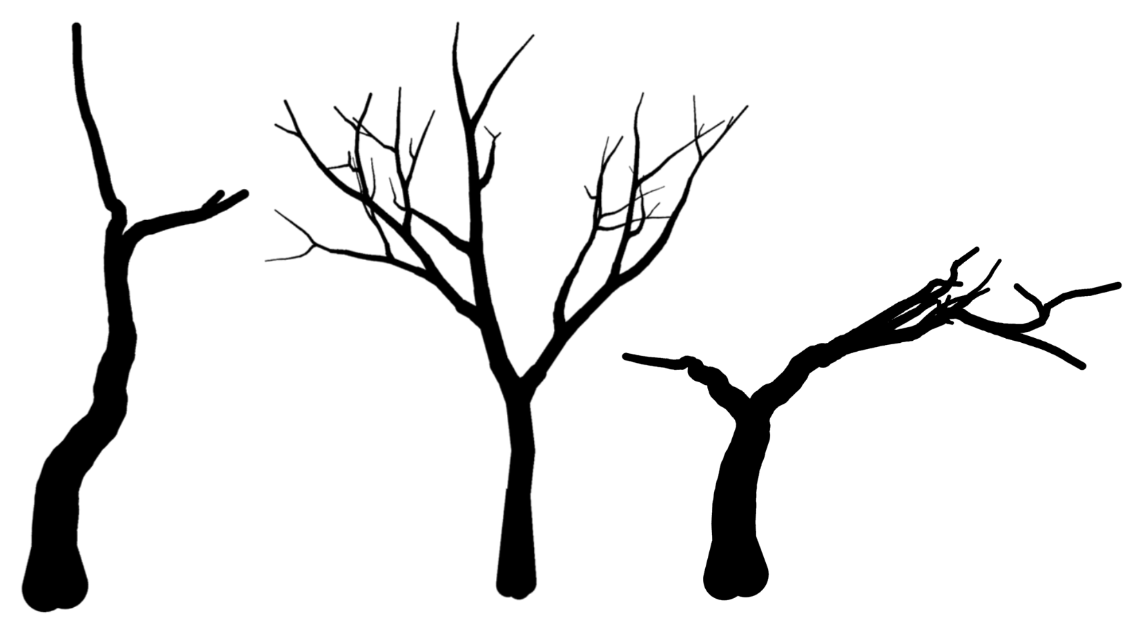 Showing Gallery For Printable Tree Stencil
