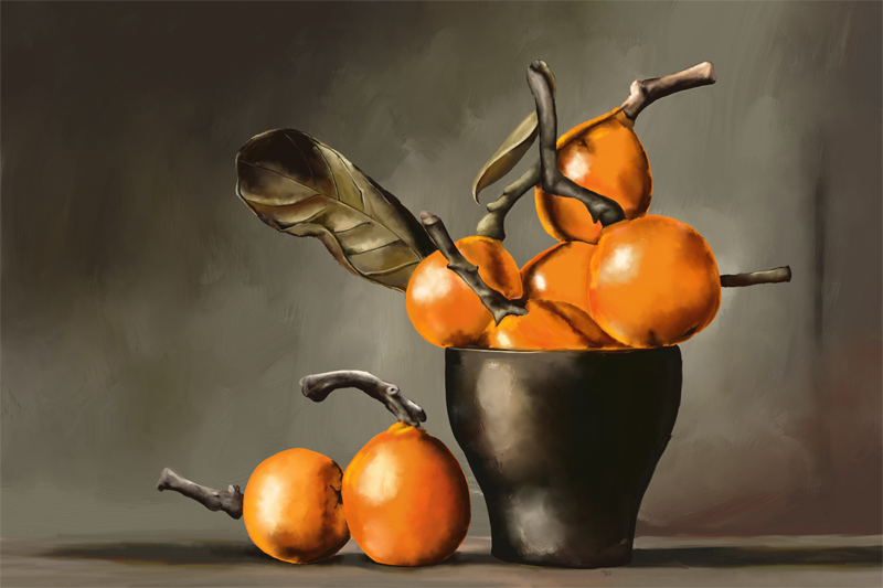 Name:  Still-Life-with-Oranges-72.png