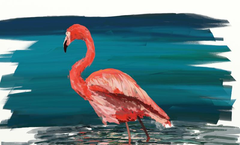 Click image for larger version.  Name:flamingo.jpg Views:139 Size:187.5 KB ID:90475