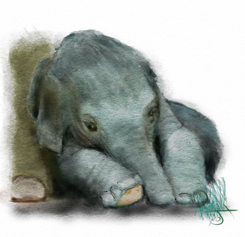 Name:  Baby elephanart.jpg