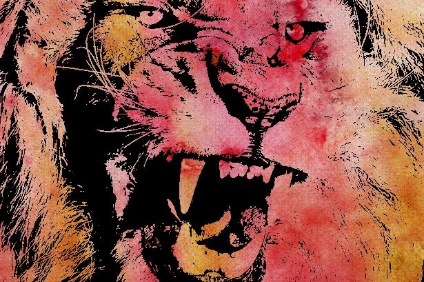 Name:  lion color.jpg Views: 925 Size:  348.8 KB