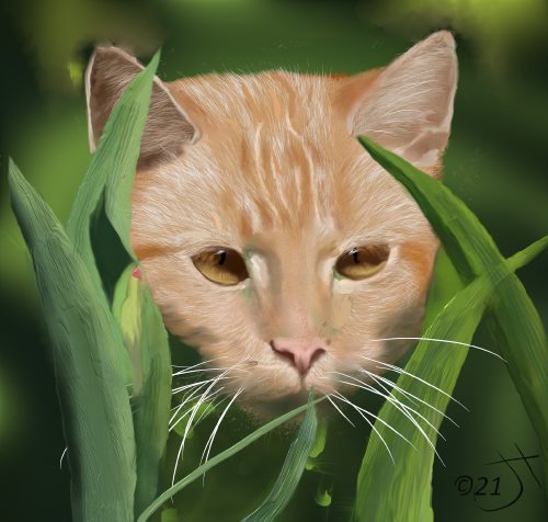 Name:  Jungle CatAR.jpg Views: 106 Size:  42.3 KB