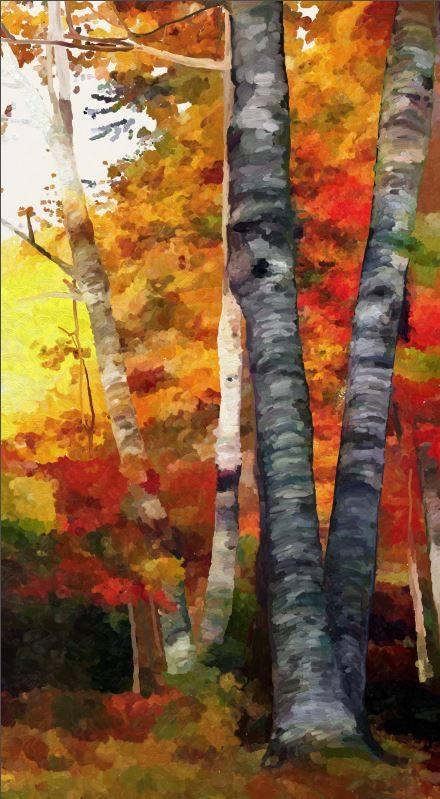 Name:  Autumn Glory III-wip3.jpg Views: 774 Size:  66.4 KB