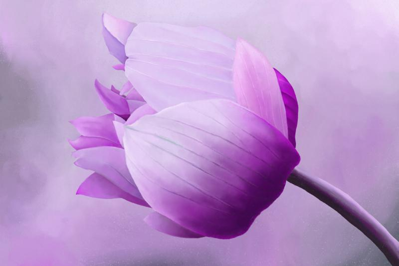 Click image for larger version.  Name:Anemone-ArtRage.jpg Views:8 Size:69.8 KB ID:97548