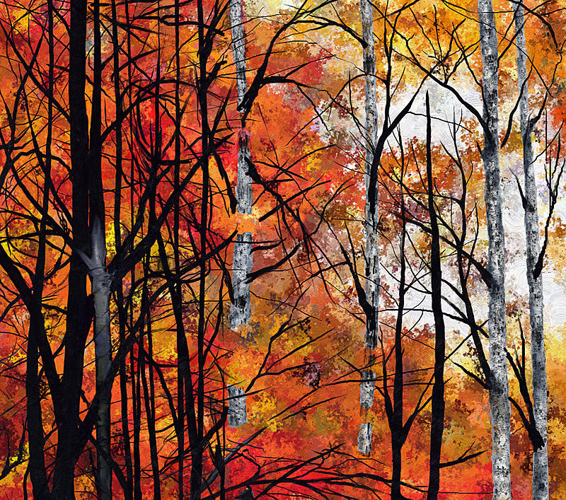 Click image for larger version.  Name:AutumnGlory-refiningleaves.jpg Views:163 Size:415.7 KB ID:82397
