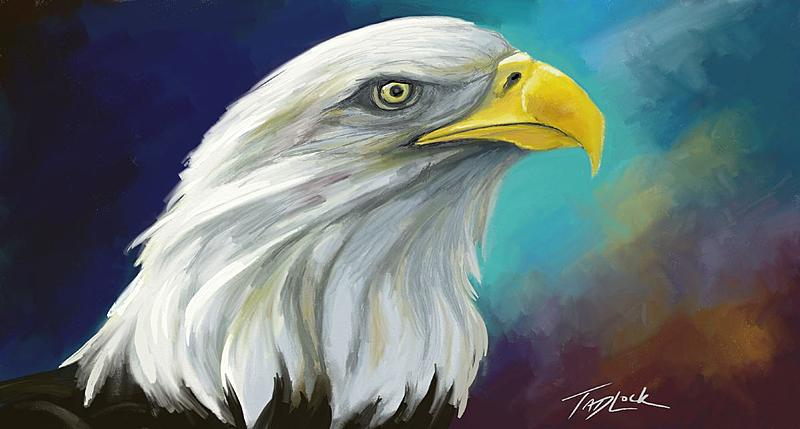 Click image for larger version.  Name:eagle-painting.JPG Views:118 Size:81.2 KB ID:85827