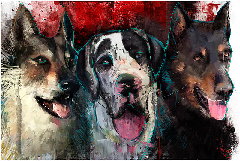 Click image for larger version.  Name:canin-b-def3.jpg Views:16 Size:491.7 KB ID:97664