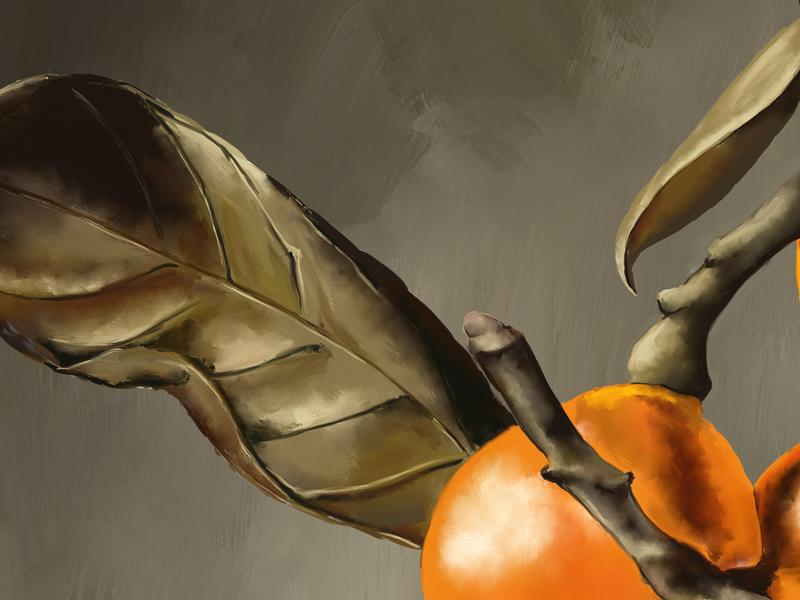Click image for larger version.  Name:Still-Life-With-Oranges-close-1.jpg Views:1 Size:119.1 KB ID:97629