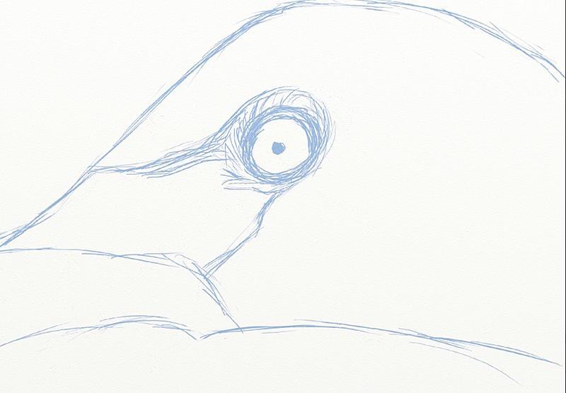 Click image for larger version.  Name:eye details omg.jpg Views:62 Size:93.6 KB ID:90934