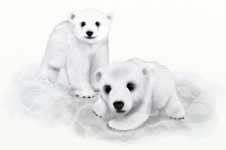 Name:  BearsUTD.jpg Views: 926 Size:  59.8 KB