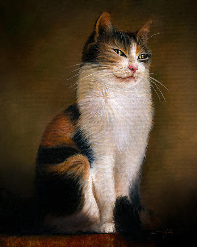 Click image for larger version.  Name:Portrait of a Cat_Small.jpg Views:122 Size:116.9 KB ID:99021