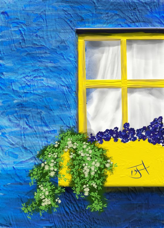Name:  Yellow window.jpg