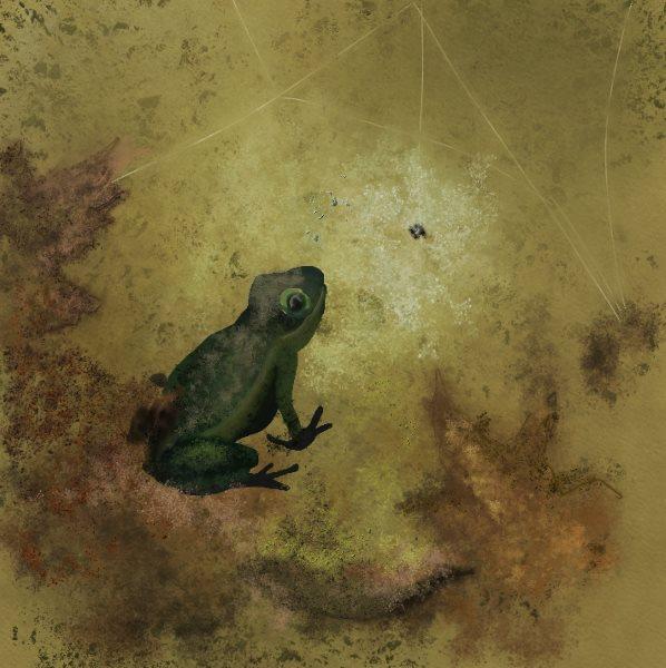 Name:  a froggy.jpg Views: 106 Size:  65.7 KB