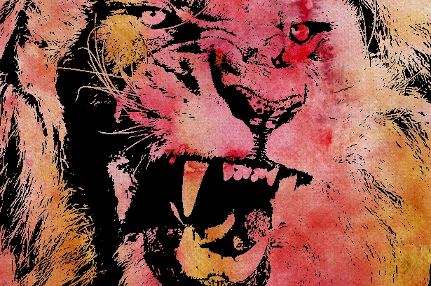 Name:  lion color.jpg