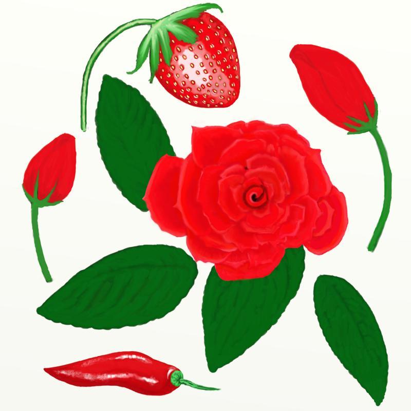 Click image for larger version.  Name:flor_rosa.jpg Views:30 Size:179.8 KB ID:98694