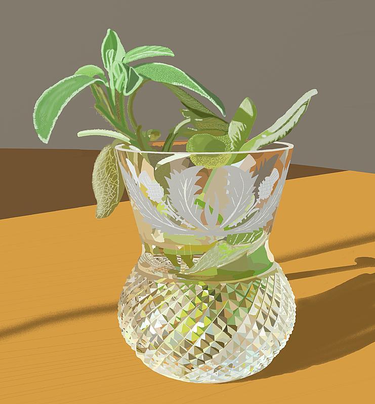 Click image for larger version.  Name:Sage in vase.jpg Views:18 Size:249.0 KB ID:98665