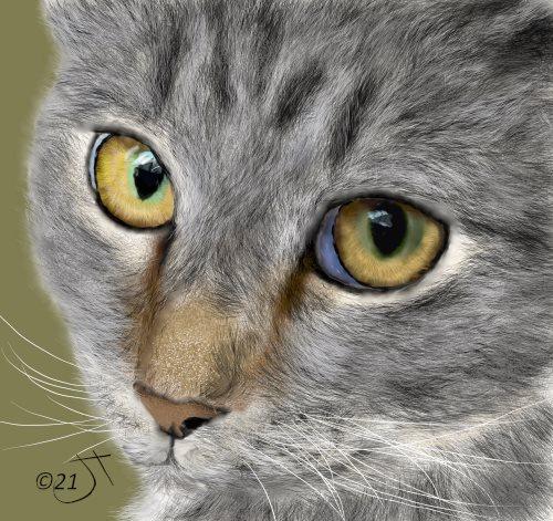 Name:  CatFaceAR.jpg Views: 128 Size:  74.9 KB