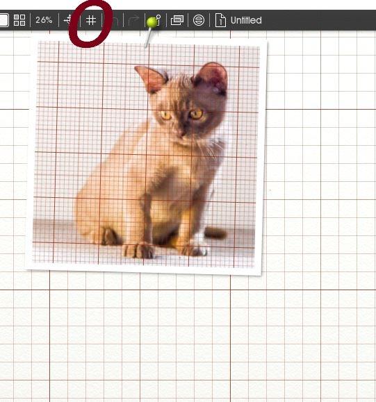 Name:  grid.jpg Views: 35 Size:  62.3 KB