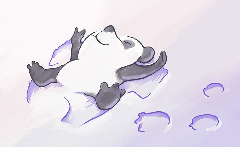Name:  Panda-Chill-2014-08-31.jpg Views: 130 Size:  36.3 KB