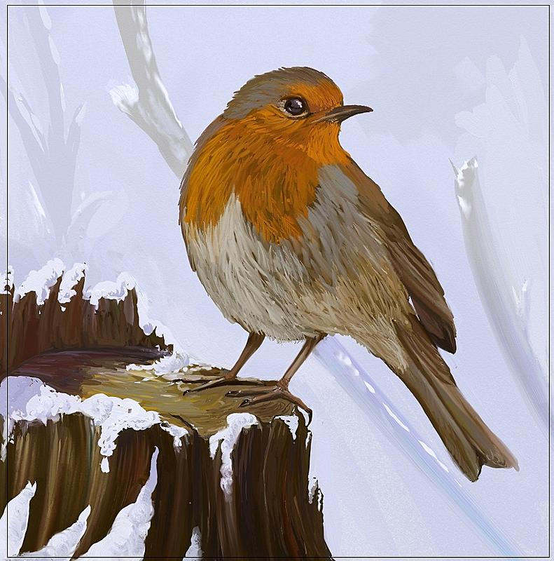 Click image for larger version.  Name:Robin3.jpg Views:106 Size:282.3 KB ID:90062