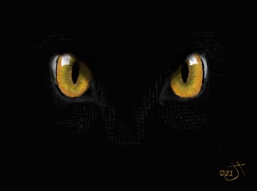 Name:  Cat eyesAR.jpg Views: 69 Size:  33.1 KB
