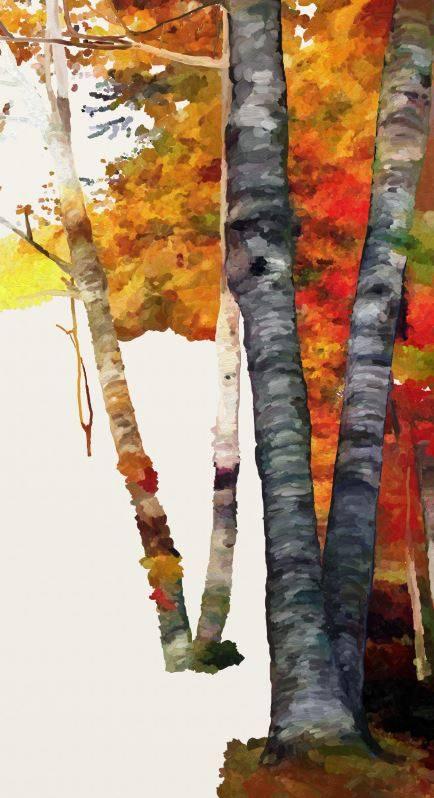 Name:  Autumn Glory III-wip2.jpg Views: 161 Size:  56.0 KB