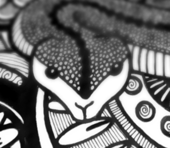 Name:  close up snake.jpg Views: 33 Size:  78.6 KB