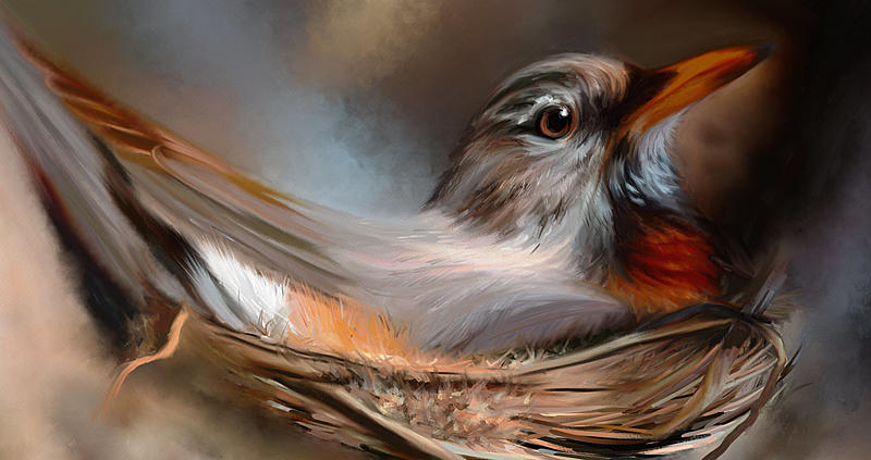 Click image for larger version.  Name:Robin in Spring_WIP_2.jpg Views:132 Size:210.9 KB ID:99040