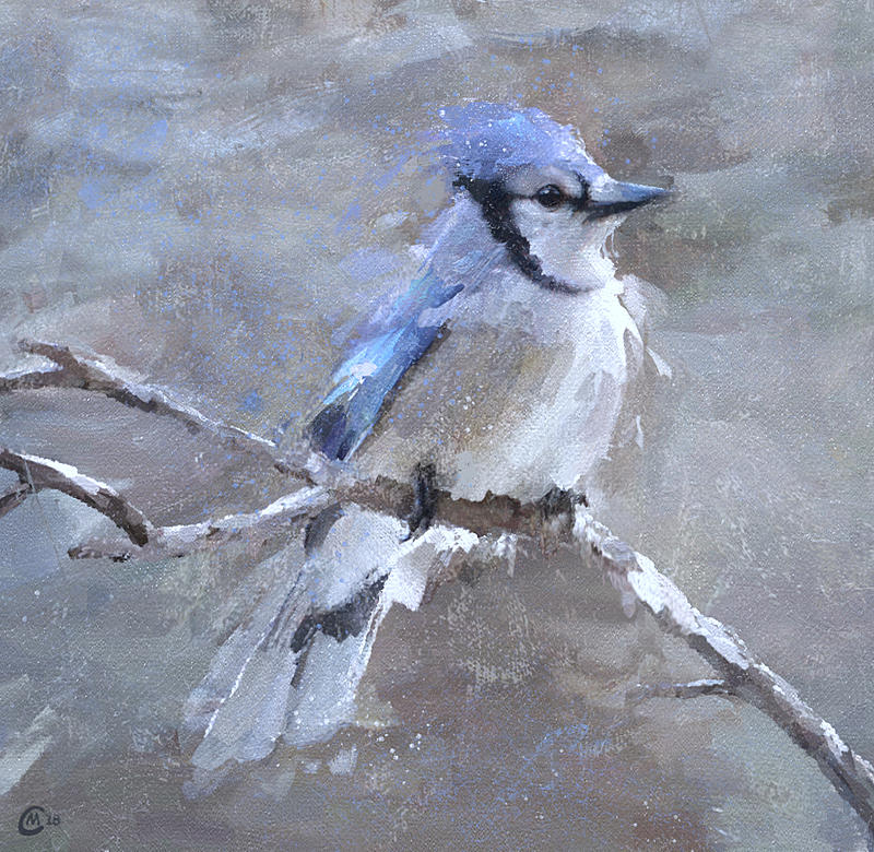 Click image for larger version.  Name:bluejay18.jpg Views:43 Size:185.6 KB ID:95670