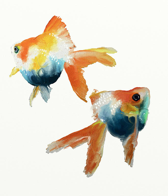 Click image for larger version.  Name:goldfish2WIP.jpg Views:119 Size:268.9 KB ID:82982