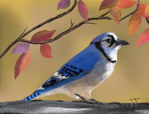 Name:  A BirdAR.jpg Views: 86 Size:  35.7 KB