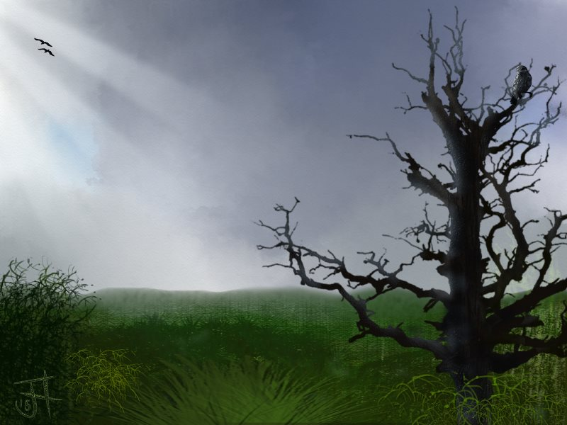 Name:  Landscape with dead tree-th.jpg Views: 86 Size:  67.7 KB