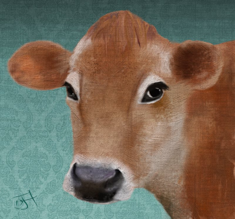 Name:  Jersey Cow.jpg Views: 128 Size:  179.2 KB