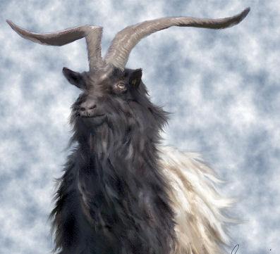 Name:  buck.jpg Views: 89 Size:  25.9 KB