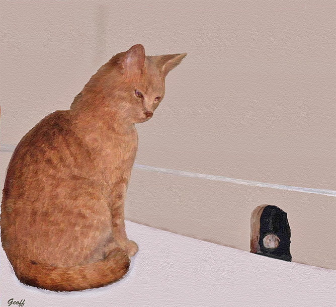 Name:  catmouse copy.jpg Views: 68 Size:  334.1 KB