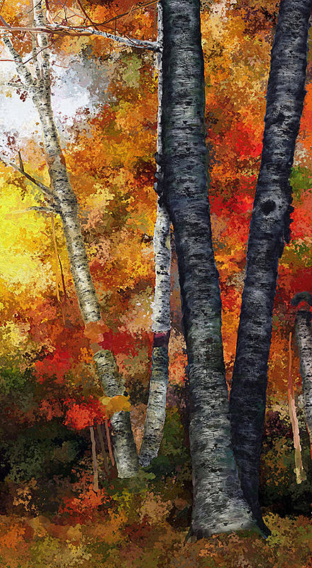 Click image for larger version.  Name:Autumn Gold III WIP4-small.jpg Views:305 Size:316.1 KB ID:82232