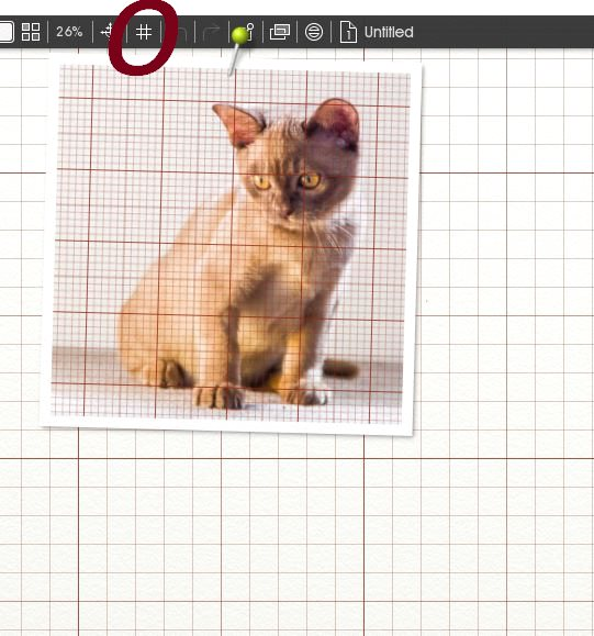 Name:  grid.jpg Views: 49 Size:  62.3 KB