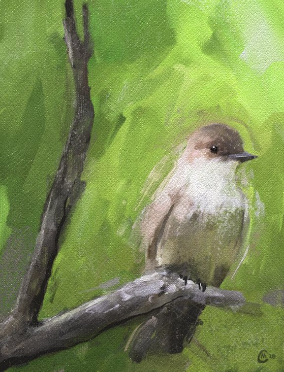 Name:  birdtree.jpg Views: 377 Size:  128.4 KB