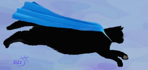 Name:  SuperCatAR.jpg Views: 82 Size:  13.6 KB
