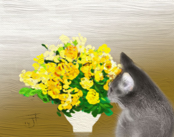 Name:  Cat and flowers-th.jpg