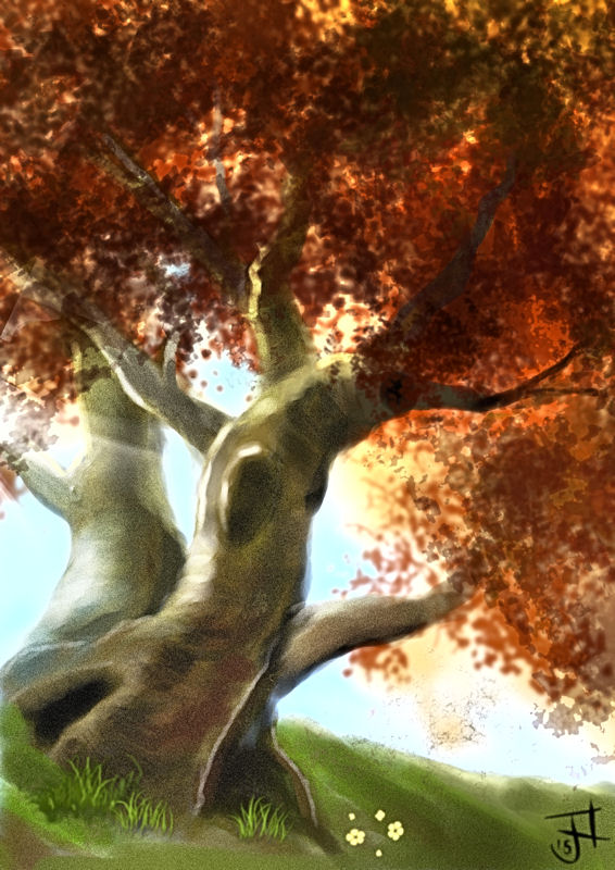 Name:  Twisted Trees-th.jpg Views: 240 Size:  116.3 KB