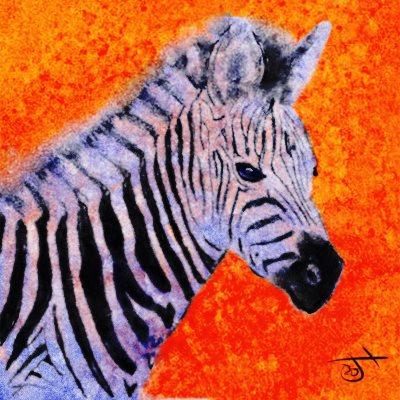 Name:  ZebraAR.jpg Views: 107 Size:  53.9 KB