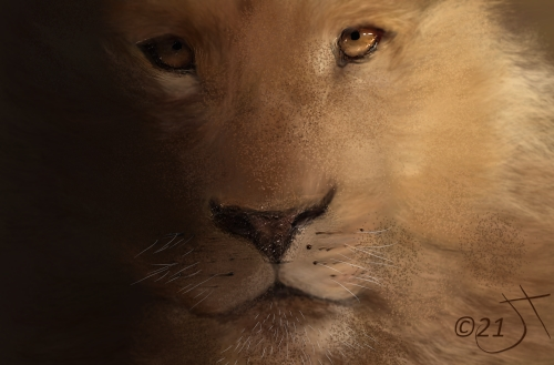 Name:  LionAR.jpg Views: 43 Size:  103.8 KB