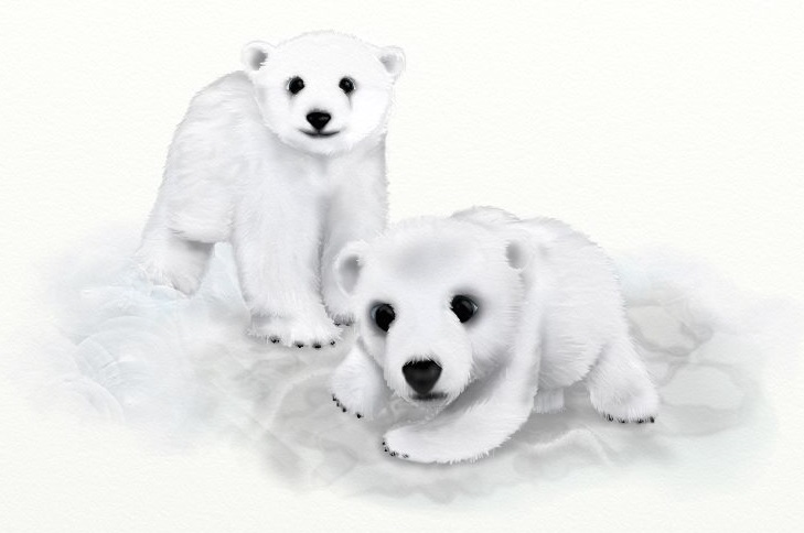 Name:  BearsUTD.jpg Views: 919 Size:  59.8 KB