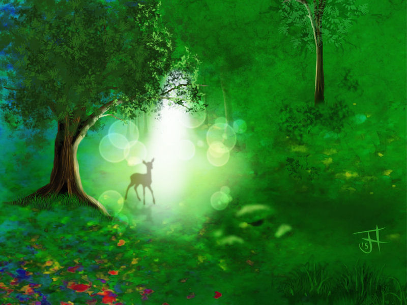 Name:  Forest Glade nik1-th.jpg Views: 104 Size:  97.5 KB