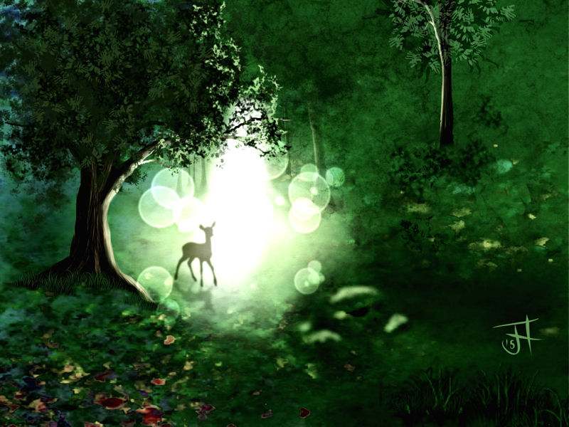 Name:  Forest Glade-th.jpg Views: 105 Size:  105.2 KB