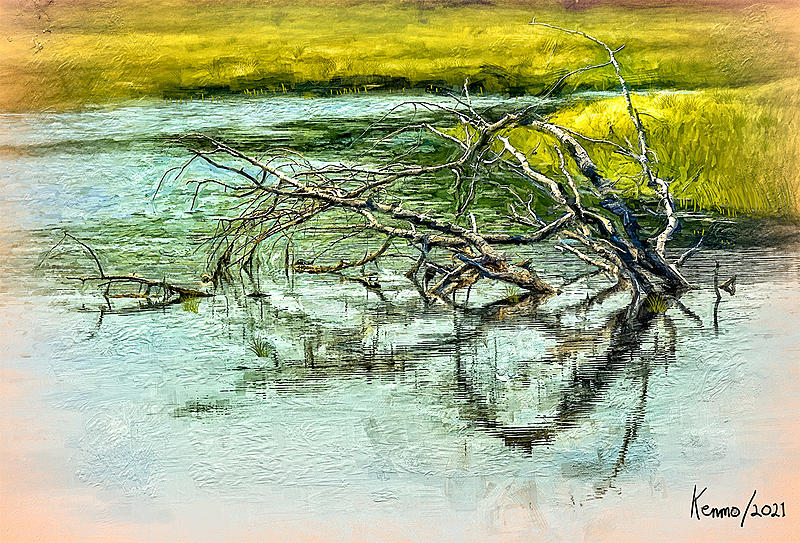 Click image for larger version.  Name:Branch in Mabou River=KRM02.jpg Views:10 Size:443.1 KB ID:101732