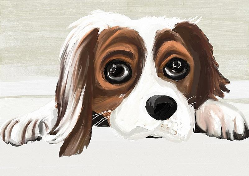 Click image for larger version.  Name:woof.jpg Views:115 Size:177.6 KB ID:98547