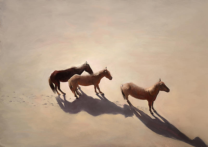 Click image for larger version.  Name:2019-9-8 horses.jpg Views:93 Size:264.1 KB ID:98045