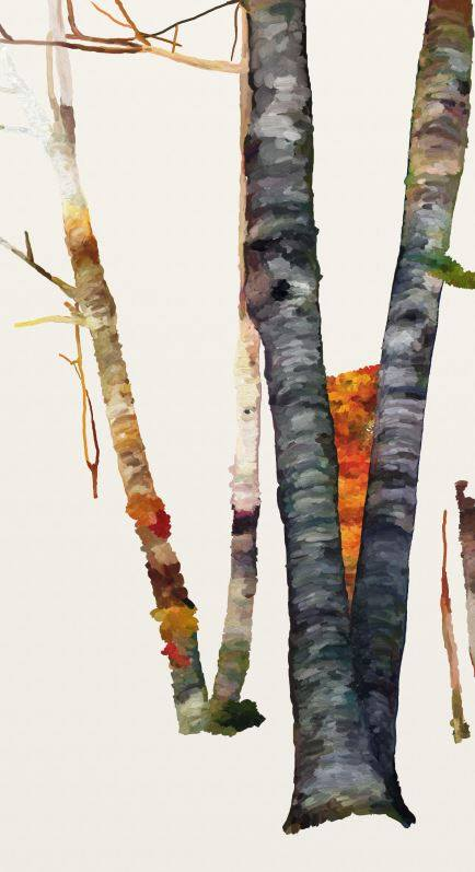 Name:  Autumn Glory III-wip1.jpg Views: 173 Size:  39.9 KB